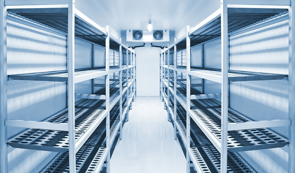 Centros de distribución (cámaras frigoríficas)